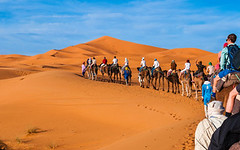 240_F_184461626_aHJir2GDRBYNs1byQEcMv9aT9xz7AwIb (lhoussain) Tags: camel another life sunrise sunset calm relax berber women