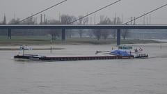 ENDEAVOUR (Mado46) Tags: bxl06 mado46 deutschland düsseldorf rhein rhine rhijn bridge brücke fluss river stroom 444v4f