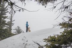 Kodak moment on Tronsen Ridge Peak (johnwporter) Tags: hiking scramble snowshoe climbing cascades mountains nationalforest okanoganwenatcheenationalforest tronsenridgepeak 徒步 爬行 雪鞋行 爬山 喀斯喀特山脈 山 國家森林 奧卡諾根韋納奇國家森林 創森脊峯 labrador yellowlab 拉布拉多 黃拉不拉多