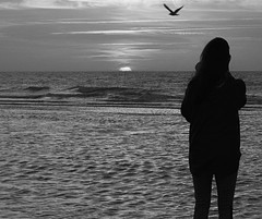 Untitled (RogelSM) Tags: bw outdoor beach sunrise hiltonhead