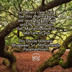 Reposted from @nithyanandaswami - I WILL TAKE CARE Now I tell you: I brought enough of power and energy to planet Earth when I landed, to put a safety net for all you people. Understand, it is not out of pride or anything, but I have to tell you: I am an (sri.sadyojata) Tags: enlightenment consciousness awakening integrity responsibility enriching authenticity transformation yoga meditation