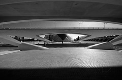 ... VANISHING POINT ... (Device66.) Tags: arquitectura xicon valencia ciudaddelasartesylasciencias monochrome symmetry