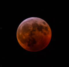 Ravi_20190121DSC_2031 (suryakantan) Tags: total lunar eclipse nikon d800 nikkor20050056ed 500mm 56f origin summit nj usa