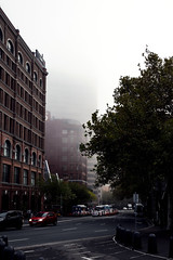 Foggy Streets of Sydney (Photos By Dlee) Tags: canoneosm5 canonm5 m5 mirrorless canon apsc canonefm32mmf14stm canon32mmf14stm canonprimelens primelens prime photo photosbydlee photography australia sydney newsouthwales nsw autumn fog weather buildings architecture