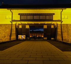 The Castle entrance (Tim Ravenscroft) Tags: castle nijo entrance gateway evening night architecture japan japanese hasselblad hasselbladx1d
