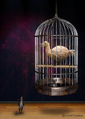 The dodo (_Ann m_) Tags: manipulation birds bird dodo photoshop photomanipulation photoart mouse