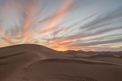 Sunset in the Sahara (Arnø N°XX) Tags: dune sand desert désert maroc maroco landsape