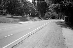 Mount Dandenong Tourist Road (Matthew Paul Argall) Tags: canonsnappy20 fixedfocus 35mmfilm blackandwhite blackandwhitefilm kentmere100 100isofilm road street mountdandenongtouristroad