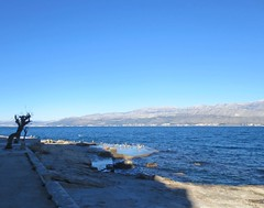 Sunčanje - Sunbathing (Hirike) Tags: galebovi seagulls hrvatska croatia dalmacija brač postira