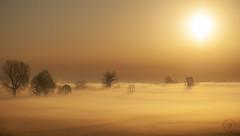 Fog and gold (Fabrizio Comizzoli) Tags: fog nebbia oro gold alba aoi elitegalleryaoi bestcapturesaoi