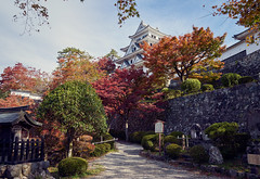 Gujo Hachiman Castle (KaeriRin) Tags: sony sony7m2 sonyalpha 28mm20 28mm japan japanese castle temple autumn red green building structure leaves tourism travel sightseeing