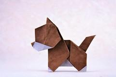 Puppy - Haruka Hashimoto (pierreyvesgallard) Tags: origami puppy dog haruka hashimoto paper folding papercraft