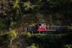 DSC09635 (wertyuioqp) Tags: river kyoto japan arashiyama boat rafting trees mountains nature autumn fall