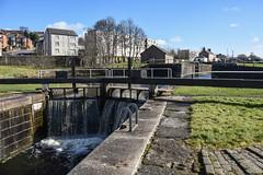 maryhill locks (70/365) (werewegian) Tags: maryhill lock canal clyde forth water sky glass glasgow mar19 365the2019edition day70365 11mar19 3652019 werewegian