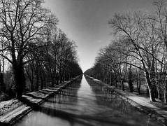 Canal Moissac (Meculda) Tags: france photographie photo picture hiver 2019 drone anafi parrot paysage landscape blackandwhite blackwhite noiretblanc noirblanc cnal eau moissac arbre tree reflet reflexion