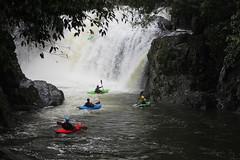 The moment when a kayaker took on Crystal Cascades (Pamela Jay) Tags: kayaking crystalcascades freshwatercreek torrent rain waterfall beautiful nature wet cyclonetrevor sunday23march2019 queensland tropical rainforest pamelajay