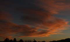 Sunset 3 3 19 #06_stitch e (Az Skies Photography) Tags: march 3 2019 march32019 3319 332019 canon eos 80d canoneos80d eos80d canon80d rio rico arizona az riorico rioricoaz sun set sunset dusk twilight nightfall sky skyline skyscape cloud clouds arizonasky arizonaskyscape arizonaskyline arizonasunset red orange yellow gold golden salmon black panorama