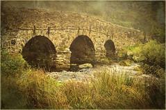 Postbridge(UK) (williamwalton001) Tags: pentaxart park nationaltrust nationalpark bridge fineart grasses stone water england dartmoor devon daarklands