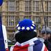 EU Cap, Westminster