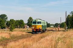 SU46-047 (Mariusz Sychowicz) Tags: pkp pkpcargo cargo polskakolej suka train su46 hcp hcp303d diesellok madeinpoland polishtrain lokomowtywa railway railwayphotography