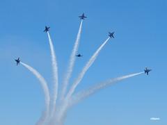 170408_090_SnF_BlueAngels (AgentADQ) Tags: usnavyblueangels blue angels aerial demonstration team aerobatic fa18 hornet f18 formation flying jet fighter plane airplane military aviation sun n fun 2017 lakeland florida