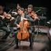 Maximilian Hornung & das Münchener Kammerorchester