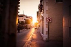 warm summer nights. (Paul Reusch) Tags: miami usa summer holiday sun sunset sunlight sundown colourful cinematic availablelight florida explore agameoftones lookslikefilm stayandwander expofilm nikon sigma art 35mm mood streetphotography streets