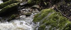 Rocks (mexou) Tags: mexou rocks moss forest wood creek luxembourg kelsbaach