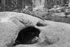 Exploring the Dana and Lyell Forks of the Tuolumne River (brucetopher) Tags: yosemite california vacation summer holiday hike explore travel camping camp hiking exploring touring wilderness nationalpark yosemitenationalpark tuolumne tuolomne outside nature natural wild black white blackandwhite bw blackwhite monochrome mono bnw