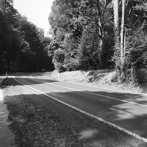 Mount Dandenong Tourist Road again