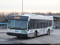Conseil intermunicipal de transport du Sud-Ouest #3028333 (vb5215's Transportation Gallery) Tags: citso conseil intermunicipal de transport du sudouest 2018 nova bus lfs