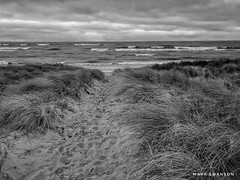 Footprints down to the beach (mswan777) Tags: scenic ansel white black monochrome mobile iphone iphoneography apple horizon cloud sky grass footprint sand beach coast shore wave wind seascape