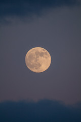 The moon! (tomsbokums) Tags: vintagelens