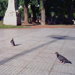 Plaza del Congreso (Bs. As.) (avilafederico) Tags: olympus 35 sp kodak pro image 100 epson v330