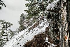 0073_20190302_121012 (marcellszmandray) Tags: ausztria hohewand gutensteinialpok alpok viaferrata kirándulás tavasz hó