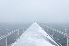 Victoria Snow Days 10 (josullivan.59) Tags: 2019 artistic bc britishcolumbia canada february vancouverisland victoria day geometric harbour minimalism nature outdoor outside overcast snow wallpaper water waterfront white winter
