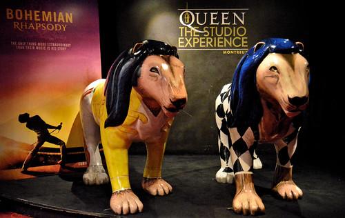 Bohemian Rhapsody Lions