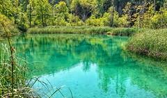 Plitvice Lakes National Park (hummingbird_66) Tags: plitvice croatia lake scenic nature astonishing colorful aquamarine