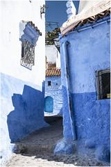 555- UN CALLEJON INCLINADO- XAUEN- MARRUECOS - (--MARCO POLO--) Tags: marruecos ciudades exotismo rincones curiosidades calles arquitectura colores