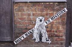Polar Bear_5512 cité Dupetit Thouars Paris 03 (meuh1246) Tags: streetart paris animaux polarbear citédupetitthouars paris03 ours