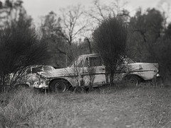 forgotten cars on 4x5 film (Garrett Meyers) Tags: autograflex4x5 garrettmeyers graflex graflex4x5 4x5film homedeveloped film filmphotographer graflexphotographer 25 blackandwhitefilm bokeh largeformat hand held