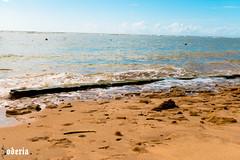 Praia do Mucugê (Bodeccn) Tags: canon t6i landscape nature bahia portoseguro arraialdajuda praia