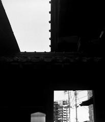 切替 (switching) (Dinasty_Oomae) Tags: ナショナルグラフレックス nationalgraflex グラフレックス graflex 白黒写真 白黒 monochrome blackandwhite blackwhite bw outdoor 東京都 東京 tokyo 寺 寺院 temple 港区 minatoku sengakuji 泉岳寺
