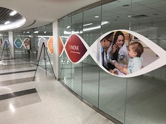 Glass vinyl graphics for INOVA Cancer Institute Event