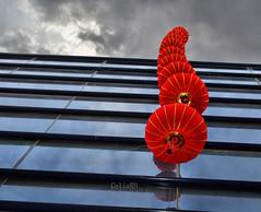 faroles chinos (Rabadán Fotho) Tags: street calle hdr canon ciudad edificio photo rojo viajar photographer spain city travel contrapicado
