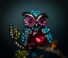 Who? (johnsinclair8888) Tags: owl jewelry macromondays johndavis dof bokeh nikon d850 105mm color pin sparkle blue green red stones macro art sigma