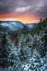 Snowy Hills (Alec_Hickman) Tags: landscape hills mountains beauty nature winter snow cold freeze frozen sunset colours trees clouds nikon d810 1635 wideangle