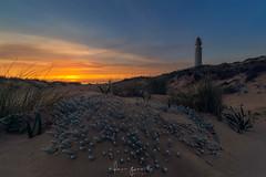 Faro de Trafalgar (Fran-Garrido) Tags: nikon d750 irix15mmf24 paisajes farodetrafalgar cádiz cañosdemeca playa costa atardecer puestadesol marina apilado 500px fb qdd malaka