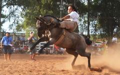 Azambuja e Mirante da Sem Querência (Eduardo Amorim) Tags: gaúcho gaúchos gaucho gauchos cavalos caballos horses chevaux cavalli pferde caballo horse cheval cavallo pferd pampa campanha fronteira quaraí riograndedosul brésil brasil sudamérica südamerika suramérica américadosul southamerica amériquedusud americameridionale américadelsur americadelsud cavalo 馬 حصان 马 лошадь ঘোড়া 말 סוס ม้า häst hest hevonen άλογο brazil eduardoamorim gineteada jineteada