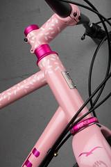 4U0A7720.jpg (peterthomsen) Tags: rodeolabs chrisking coveypotter scrambler steel pink nahbs caletti